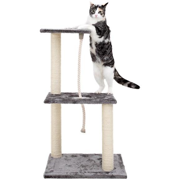 Griffoir pour chatde luxe